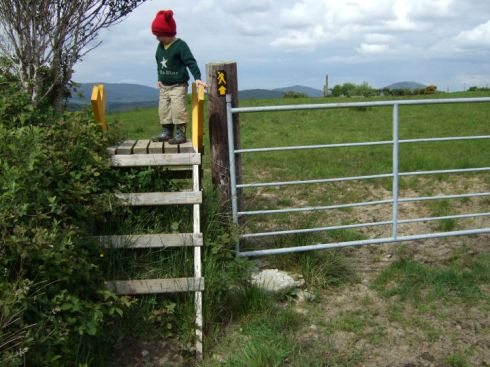 Access to the monuments at Kealkil, Co.Cork.