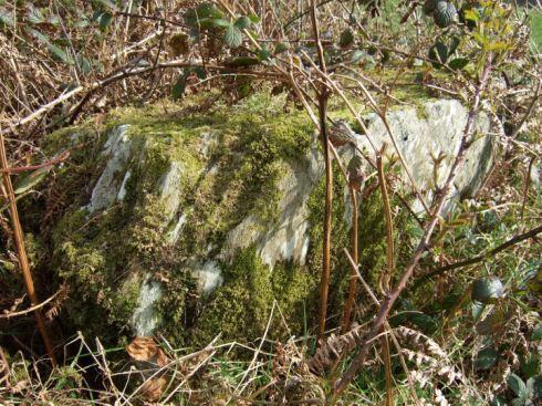 Stone Circle at Carrigagrenane SW, Co. Cork.