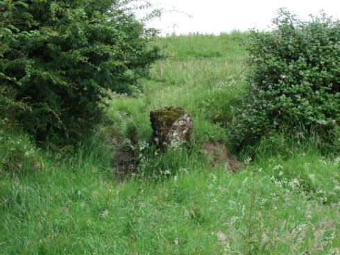 One of the points at which livestock make access through the bank.