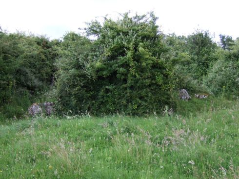 The internal kerbed cairn with the eastern section of the earthen bank to the rear - both heavily overgrown.