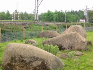 Kemp Howe Stone Circle – some of its stones are believed to still be under the railway embankment