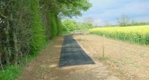 pathway2005