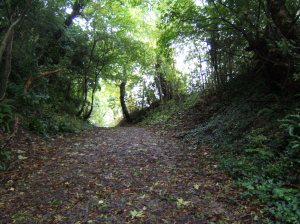 The walk up to the hillfort