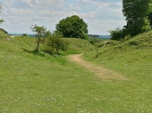 Danebury exit