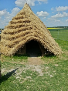 Neolithic Grass Houses