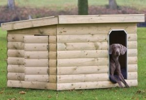 A modern dog kennel.