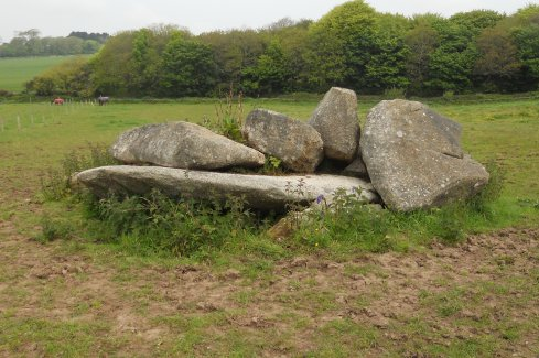The stones at Carwynnen, May 2012.