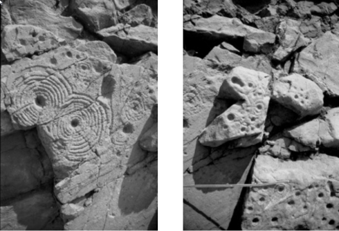 Illus. 3. The two phases of carving on Greenland 1. The left view is of the double disc symbol with, on the right, one of the rock surface immediately to its right. The slight overlap between the pictures can be seen in the appearance in both of the rather rough cup-and ring mark immediately to the right of the double disc. The much fresher appearance of the double disc is apparent, as is the more weathered condition of the symbols to its right. Likewise the surface on which the double disc is carved is flat and has clearly been exposed by the splitting off of slabs; the more rounded and uneven glaciated original surface is clear on the right. Slight damage to the double disc was caused later, evidently by more slab removal