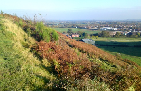 Oswestry view