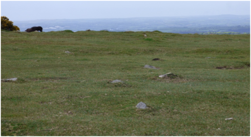 Row leading towards the low cairn at the south western end. View from the north east.
