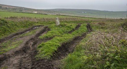 boslow tracks