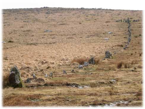 Even the classic site at Hingston Hill would have failed this particular prehistoric test. Different sized stones, many of them very small combined with a sinuous character means that this row too can't be prehistoric!