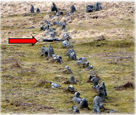 The sinuous form of this row is obvious when viewed along its length from the south west. The large stones at the top of the photograph surround the cairn. The form of the row strongly suggests that perhaps it was an established path that was subsequently denoted by stones. The large recumbent stone is indicated by a red arrow. This is the point where the sea becomes visible for the first time as you walk up the row.
