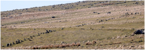 View from the south east of the row. The hillside is littered with substantial blocks of granite but the builders of the row selected smaller more manageable stones.
