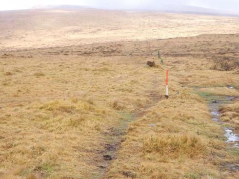 The Butterdon Hill stone alignment on Dartmoor measures 1973m long