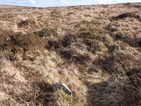 If this plan goes ahead much of Dartmoor's amazing archaeology will be lost from sight. The fate of the largely invisible stone row at Spurrell's Cross could await many cherished archaeological sites in South West England.