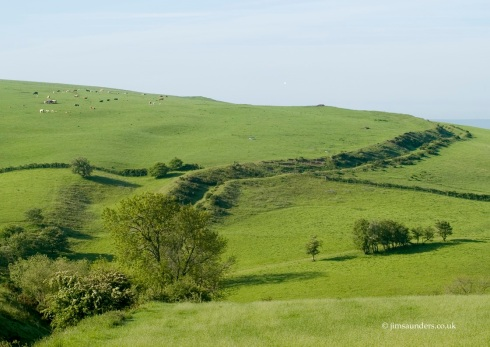 The classic view of Offa's Dyke, curving across Llanfair Hill in south Shropshire © jimsaunders.co.uk